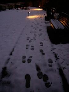 orme_nella_neve