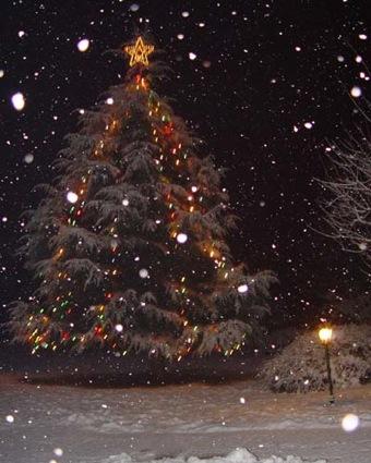 albero_di_natale